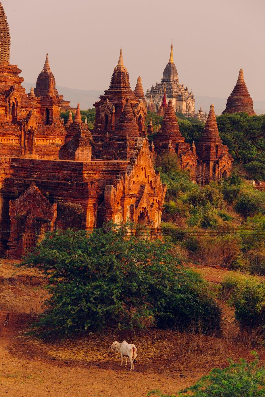 Bagan wschód słońca